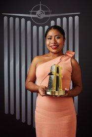 Hollywood Film Awards - New Hollywood Award